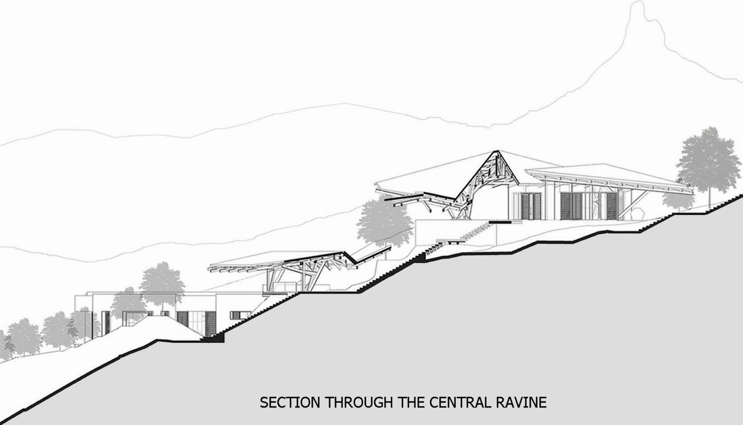 Section through the central ravine Malik Architecture Team}