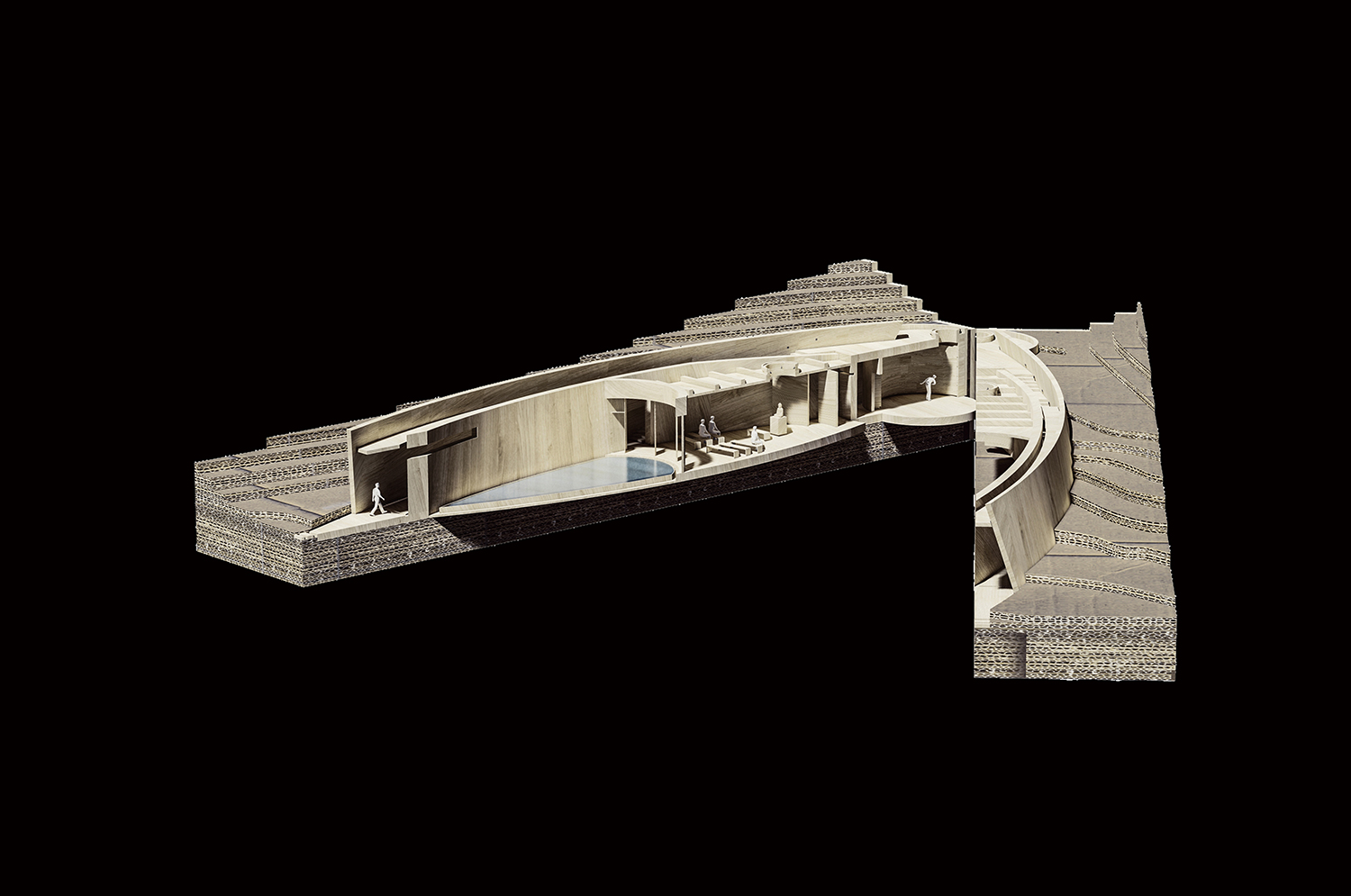 Model of the ancestral hall line+}