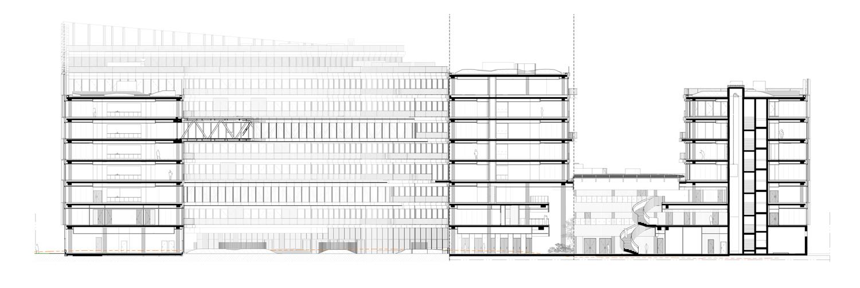 AA Section © Henning Larsen Architects}
