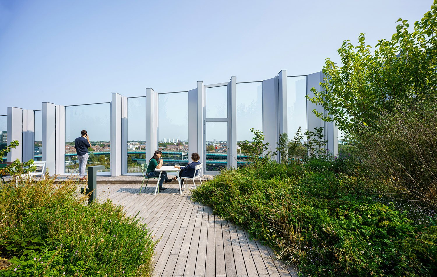 The 5.500m2 green roof is home to 65 species of plants, trees, shrubs, and perennials © Javier Callejas Sevilla