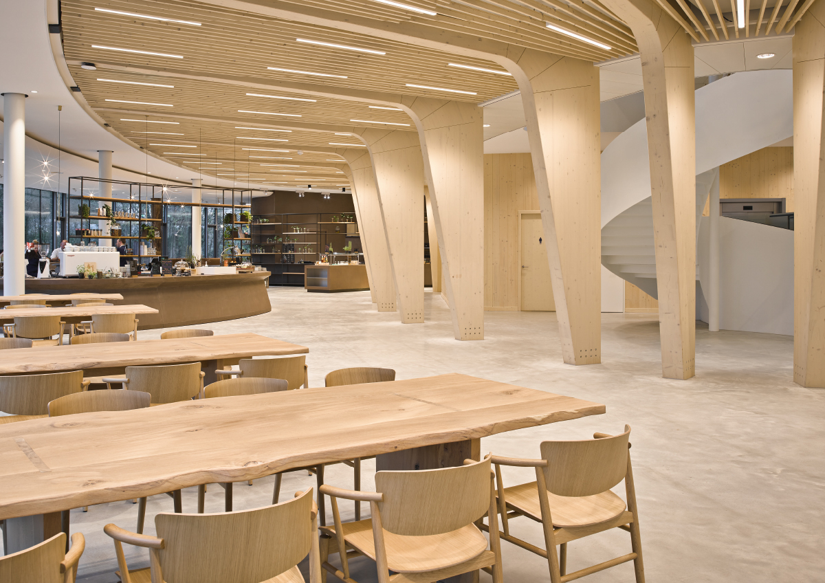 """The circular economy and a wooden """"cathedral"""" immersed in nature"""
