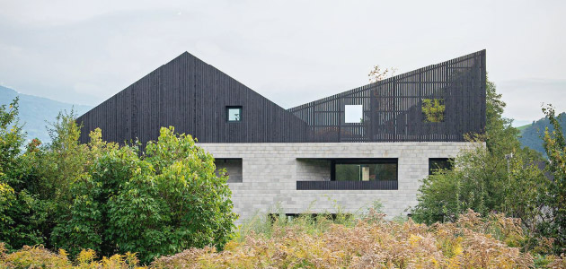 The Pointed Roof House - a home  for two sisters