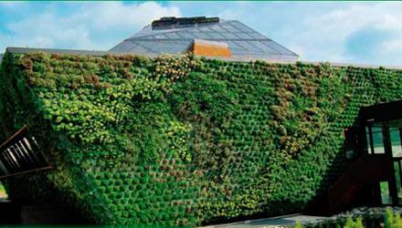 Wall Garden by Optigreen