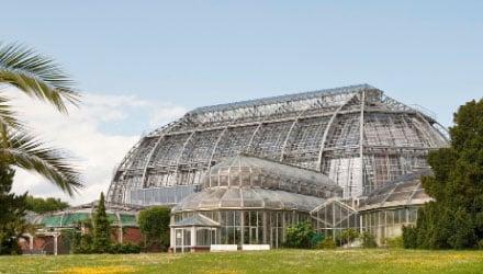 Restauro della Grande Serra Tropicale dei Giardini Botanici