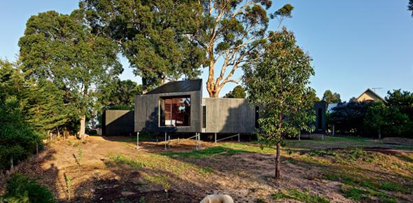 La casa tra gli eucalipti