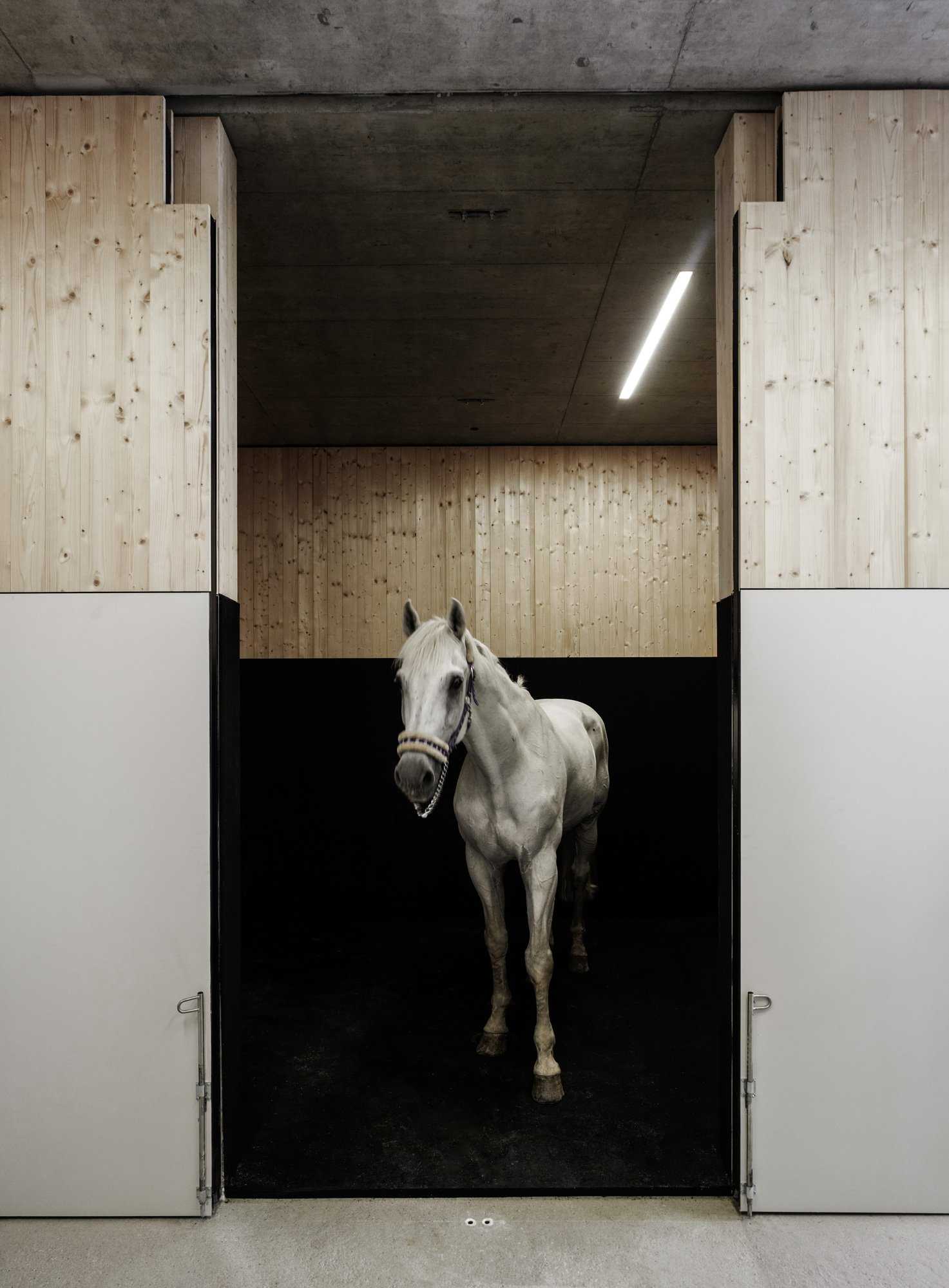 Centro veterinario equino Griss di Marte.Marte Architekten © Marc Lins