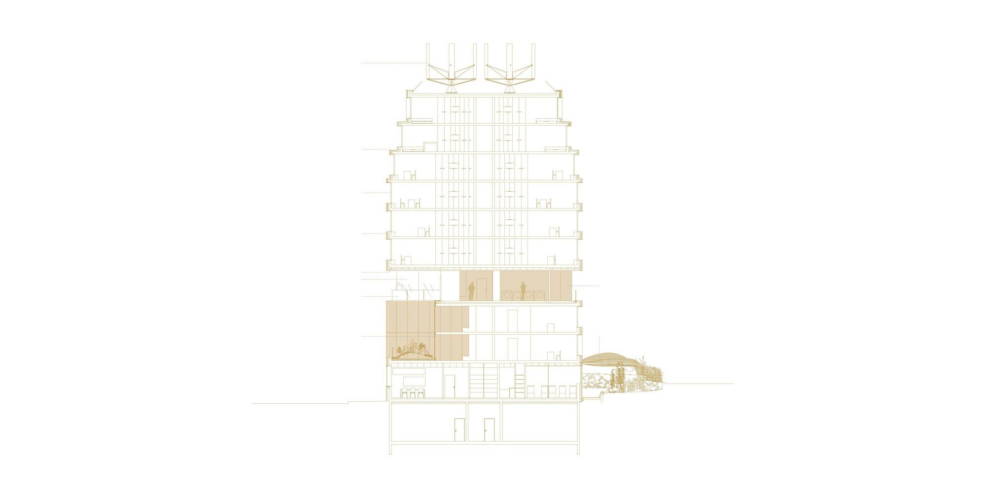 Section © Avenier Cornejo Architectes