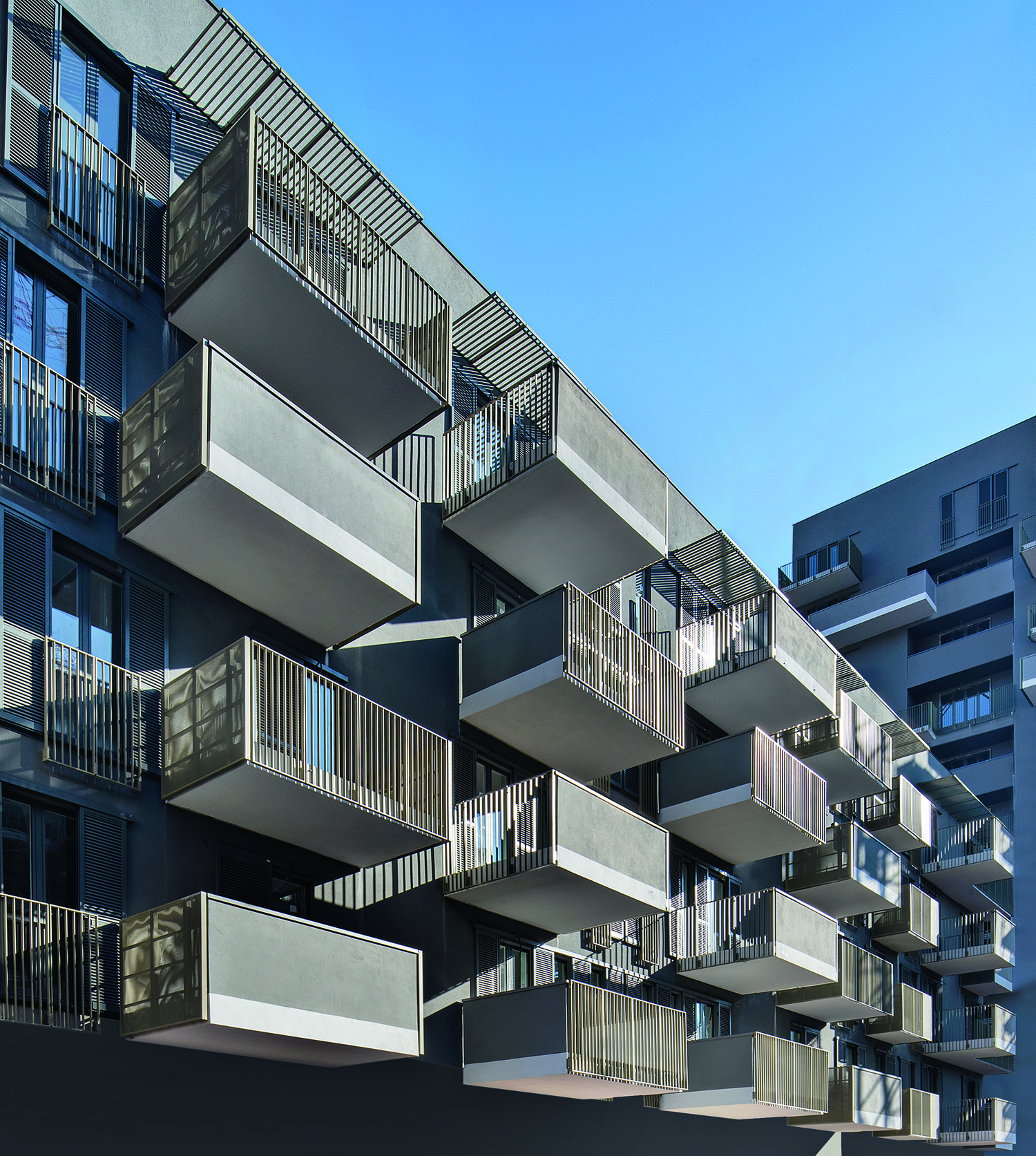 © Carola Merello Housing sociale Ex-Boero, Genova, 2020