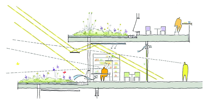 Sezione bioclimatica degli uffici