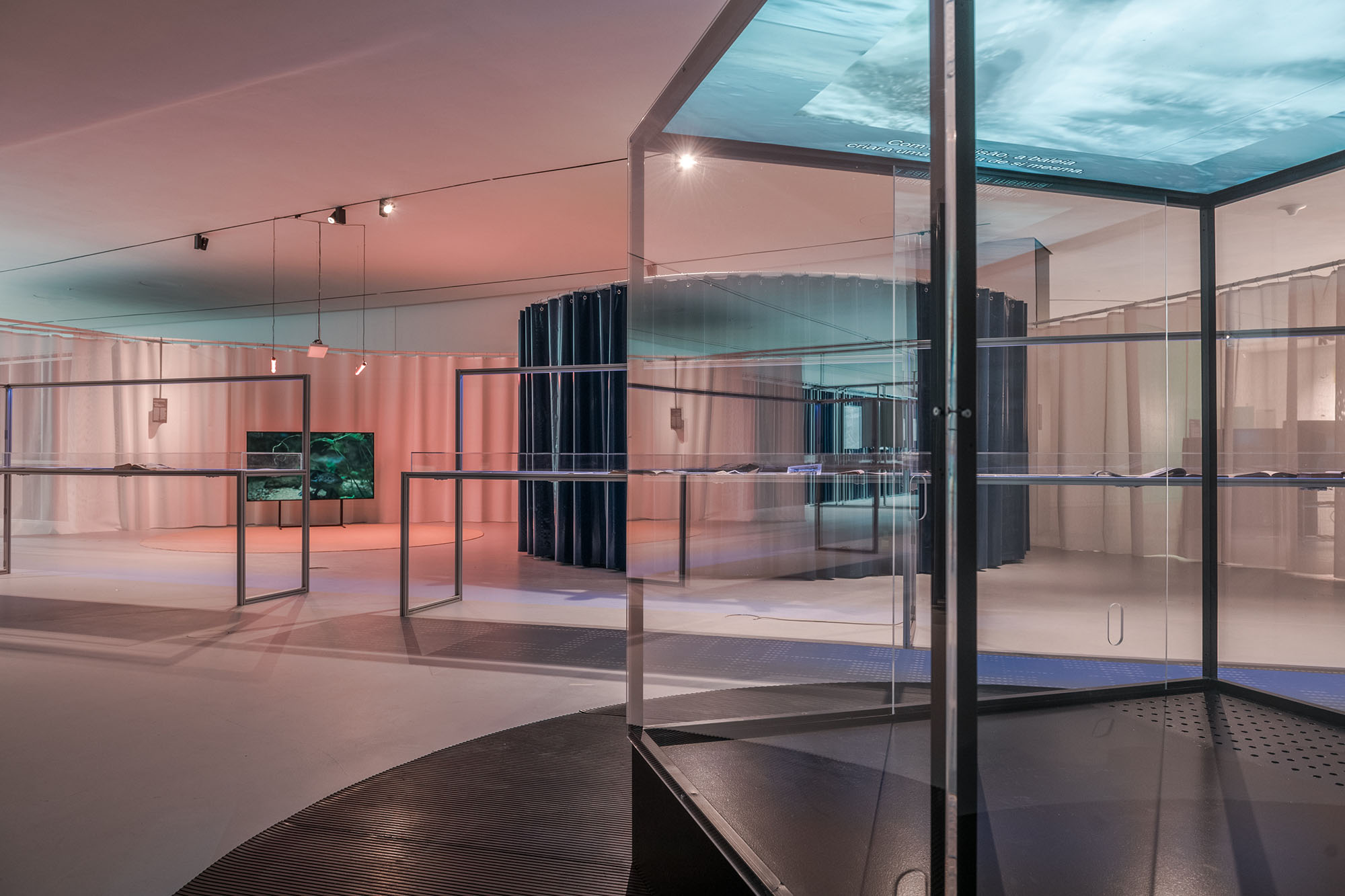 Aquaria. Or the Illusion of a Boxed Sea, installation view: Eva Jack, Parallel Lives II (Whale Watching), 2020. maat – Museum of Art, Architecture and Technology (Lisbon), 2021 © Courtesy of EDP Foundation. Photography by Pedro Pina.