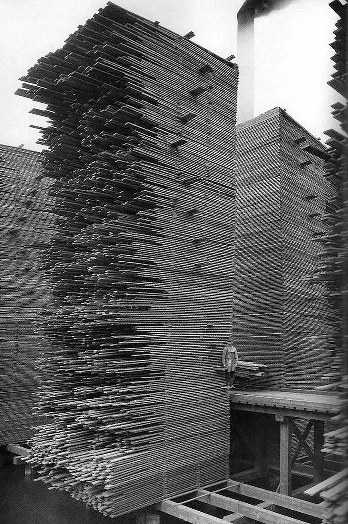 Stacks of lumber, Seattle Cedar Manufacturing Plant, Ballard, 1958, Photo by Webster & Stevens. Digital Collection: Museum of History & Industry Photograph Collection. Courtesy of the Pavilion of the United States at the 17th International Architecture Exhibition – La Biennale di Venezia