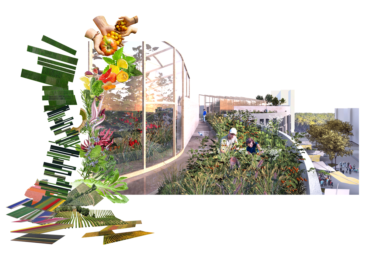 Plateau Central Masterplan and Housing, 2017  Benedetta Tagliabue - Miralles Tagliabue EMBT  (Conceptual Collage, housing and urban agriculture)